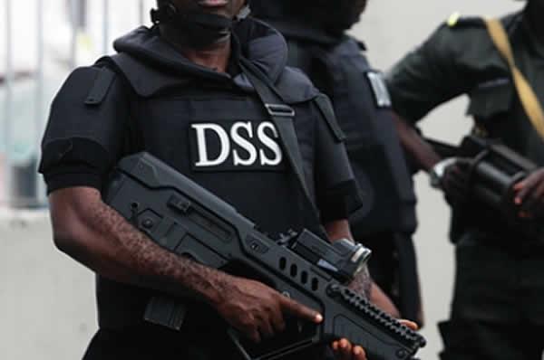 DSS (1).jpg