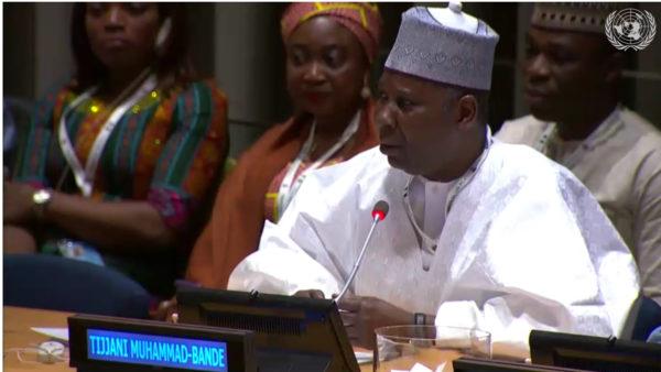 Prof.-Mohammed-Bande-Nigeria's-PR-at-the-UN.jpg