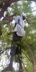 Mr-John-Antagav-hanging-on-the-tree.jpg