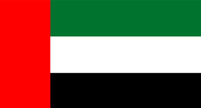 DUBAI FLAG.jpg
